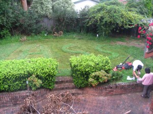 Half way through mowing..